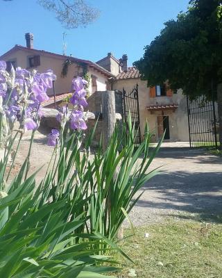 Casa Vacanze Podere Ugolini