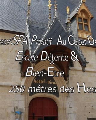 Appart' Spa et Sauna Privatif Au Cœur De Beaune