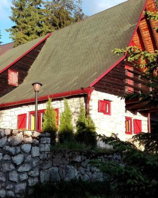 Mountain Family House