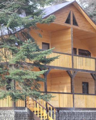 Guest House Arkhyz Rezort