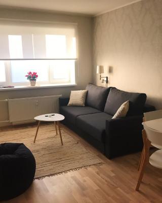 Rakvere Laada 8 Apartment