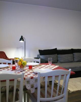 Nikolai apartment