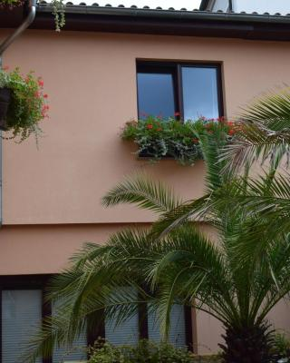 Hotel Arte Vida
