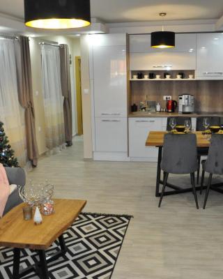 Aria lux Apartment