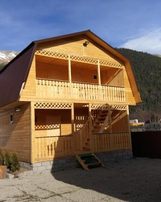 Guest House Berloga09