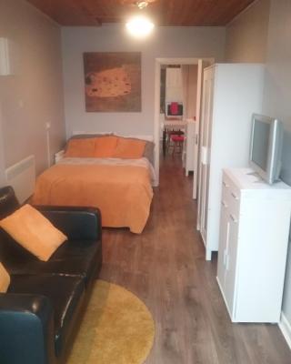 Auburn Studio Apartment