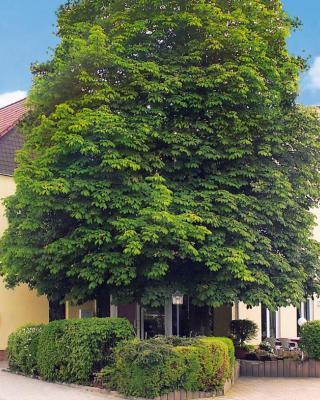 Hotel & Gasthof Zum Löwen