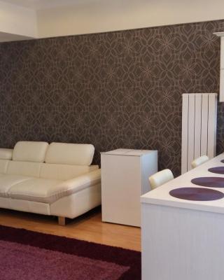 Apartament Alexandru