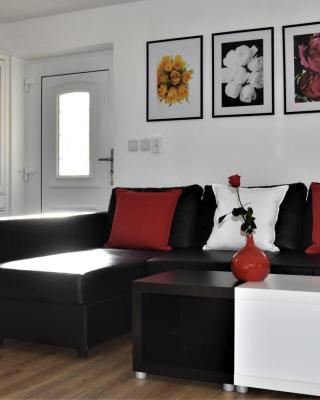 Apartment Aleks
