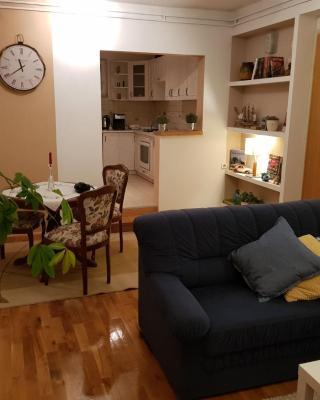 Apartment Dobrodol