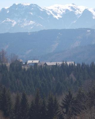 Bauernhof Moadl