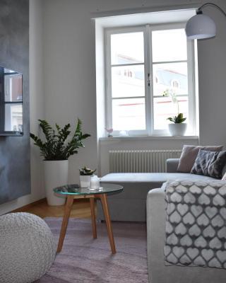 Apartment Velke namesti