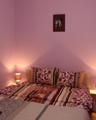 Lavender Style Apartment