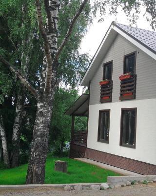 Дом с елями