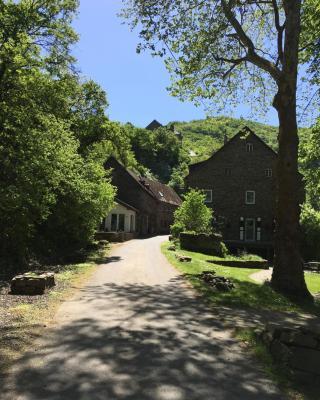 Wildburgmühle