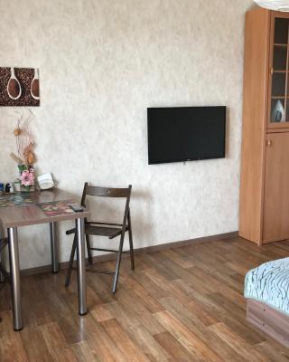 Apartments na Pavlovskom