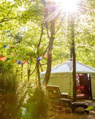 Larkhill Tipis and Yurts