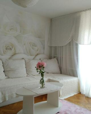 Holiday rooms in the rosy garden