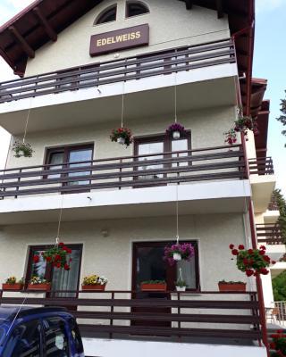 Vila Edelweiss