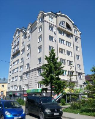Apartment On Vokzalnaya 4