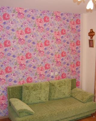 Uyutny Dom Apartment