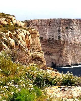Gozo Says Relax