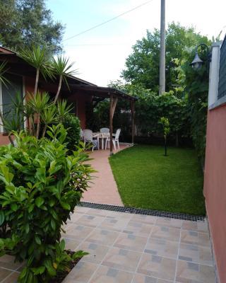 Casa Vacanze Mimose