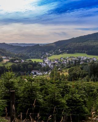 Feldmann-Schütte