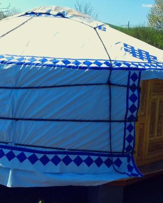 Romantic Mongolian yurt in the Wild