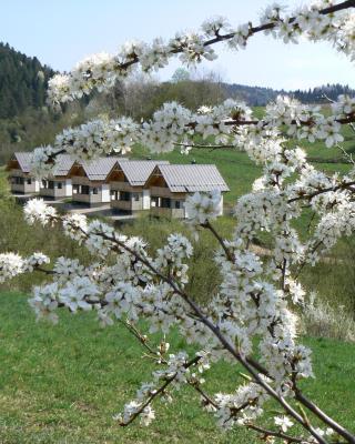 Rekreačna usadlosť Pieninka