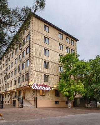 Apart-Hotel Onegin