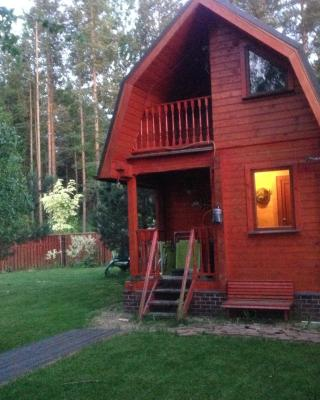 Cottage na Lesnoy 18