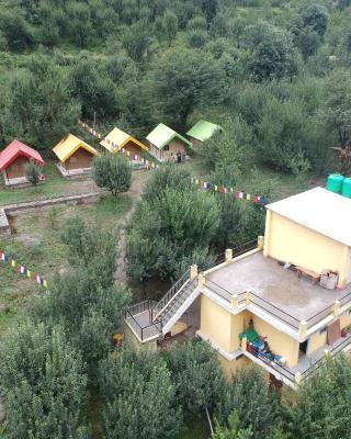 Yolo Camping (Himachal Pradesh)