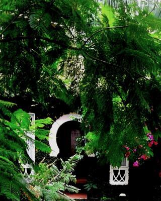 Casa da Vila Moura