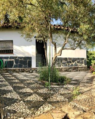Casa Papiqui