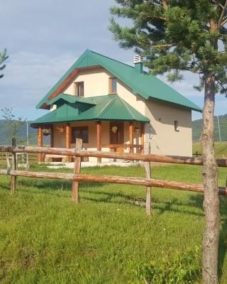 Vacation Home Andjelic