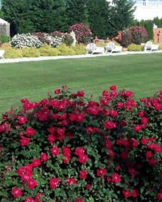 dover garden suites