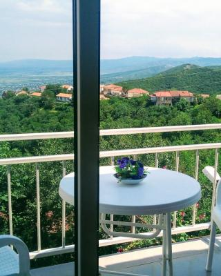 Guest House Alazani Valley