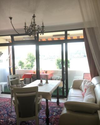 Apartments am Rhein