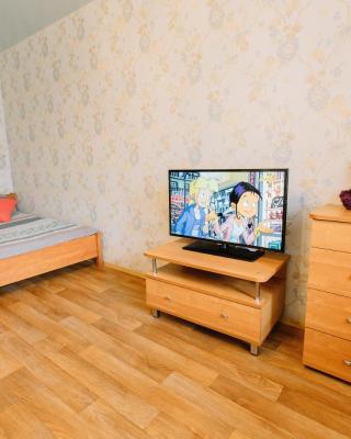 Апартаменты Елизаровых 10
