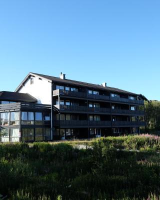 Fjelltun Fritidsleiligheter, leil. 405 og 407