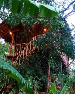 Habarana Ambasewana Resort