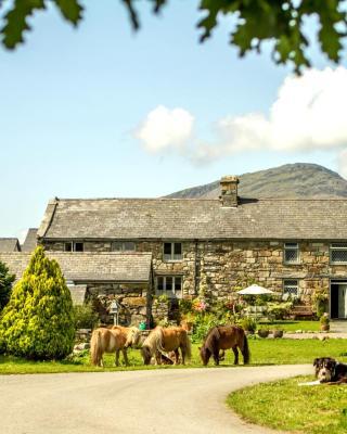 Tyddyn du Farm Luxury Suites