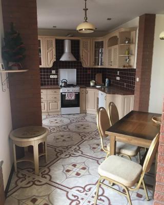 Apartment Sichovykh Stril'tsiv Street