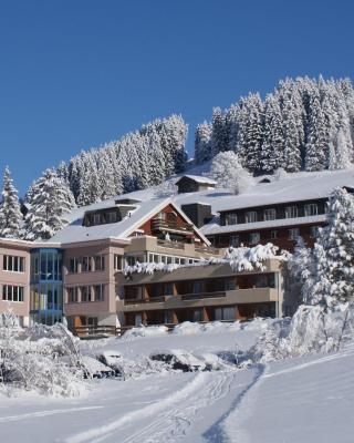 Ferien- und Familienhotel Alpina Adelboden