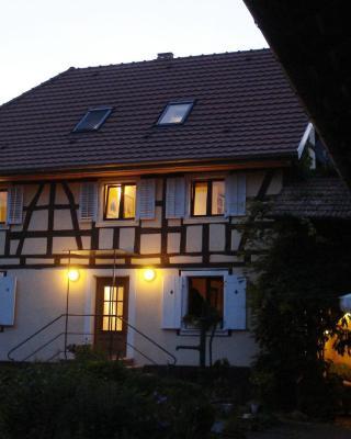 Chat au Grumbach