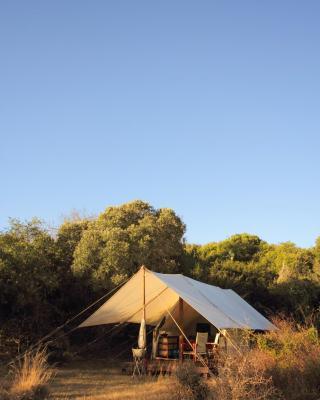 Quatermain's 1920's Safari Camp