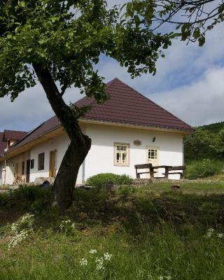 Huize Zwaluw - Lastovicka