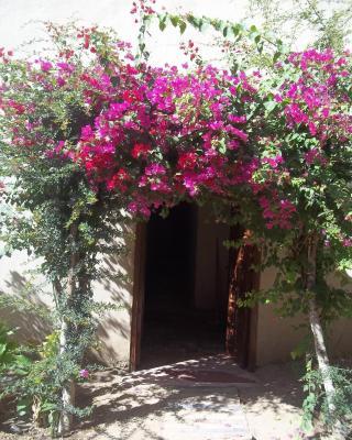 Nour El Gourna