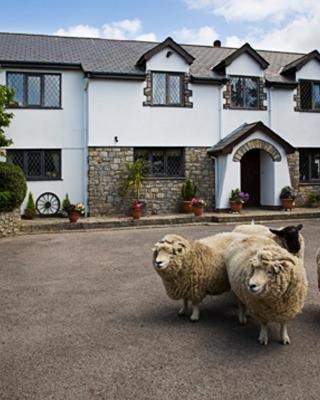 Sheepleys B&B